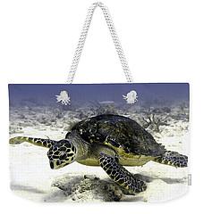 Hawksbill Caribbean Sea Turtle Weekender Tote Bag