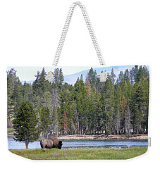 Hayden Valley Bison Weekender Tote Bag