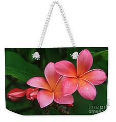 He Pua Laha Ole Hau Oli Hau Oli Oli Pua Melia Hae Maui Hawaii Tropical Plumeria Weekender Tote Bag