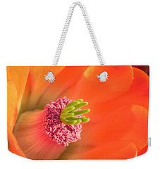 Weekender Tote Bag featuring the photograph Hedgehog Cactus Flower by Deb Halloran