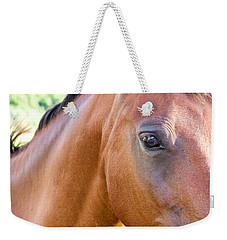 Weekender Tote Bag featuring the photograph Hello Beauty by Roselynne Broussard