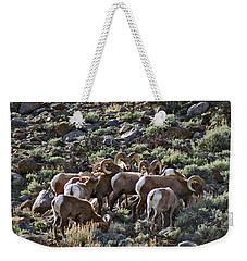 Herd Of Horns Weekender Tote Bag by Jeremy Rhoades