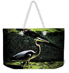 Weekender Tote Bag featuring the photograph Here Fishy Fishy by Robert McCubbin