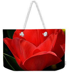 Weekender Tote Bag featuring the photograph Here's My Heart by Nava Thompson