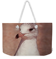 Weekender Tote Bag featuring the photograph Beach Gull On The Hunt by Belinda Lee