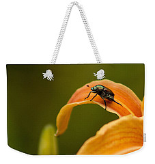 Weekender Tote Bag featuring the photograph Hey There by Ben Shields