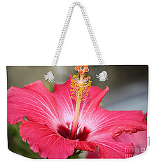 Weekender Tote Bag featuring the photograph Hibiscus by Todd Blanchard