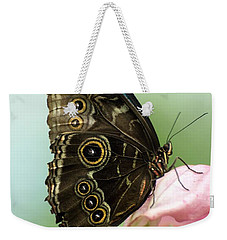 Weekender Tote Bag featuring the photograph Hidden Beauty Of The Butterfly by Debbie Green