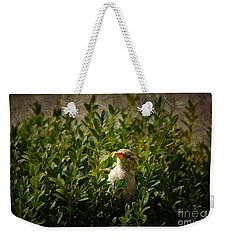 Weekender Tote Bag featuring the photograph Hide And Seek by Mariola Bitner