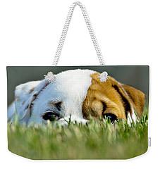 Hide And Seek Novice Weekender Tote Bag
