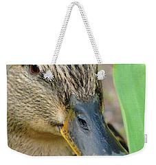 Hide And Seek Weekender Tote Bag by Tiffany Erdman