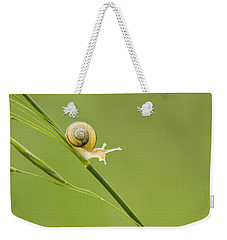 High Speed Snail Weekender Tote Bag by Mircea Costina Photography