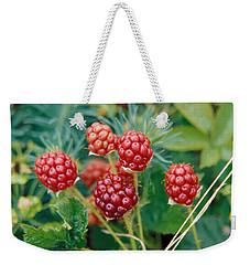 Highbush Blackberry Rubus Allegheniensis Grows Wild In Old Fields And At Roadsides Weekender Tote Bag