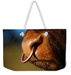 Weekender Tote Bag featuring the photograph Highland Bull by Gavin Macrae