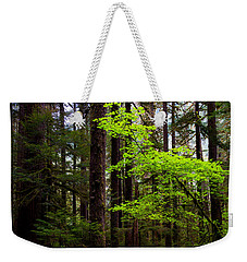 Highlight Weekender Tote Bag by Chad Dutson
