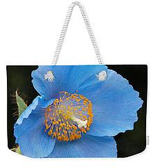 Himalayan Gift -- Meconopsis Poppy Weekender Tote Bag