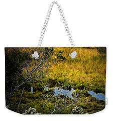 Home On The Range Weekender Tote Bag by Robert McCubbin