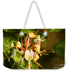 Honeysuckle Weekender Tote Bag by Liz  Alderdice