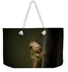 hop Weekender Tote Bag by Shane Holsclaw
