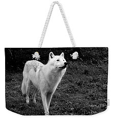Weekender Tote Bag featuring the photograph Hopeful by Vicki Spindler