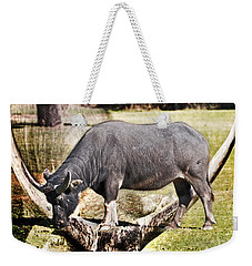 Horn Of A Buffallo Weekender Tote Bag