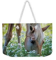 Horse And Daisies Weekender Tote Bag by Paul Freidlund