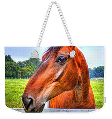 Weekender Tote Bag featuring the photograph Horse Closeup by Jonny D