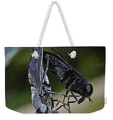 Weekender Tote Bag featuring the photograph Horse Fly by DigiArt Diaries by Vicky B Fuller