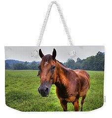 Horse In A Field Weekender Tote Bag by Jonny D