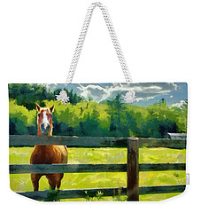 Weekender Tote Bag featuring the painting Horse In The Field by Jeff Kolker