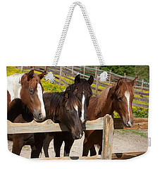 Horses Behind A Fence Weekender Tote Bag