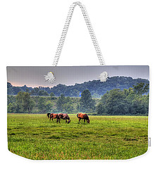 Horses In A Field 2 Weekender Tote Bag by Jonny D