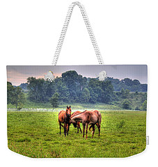 Weekender Tote Bag featuring the photograph Horses Socialize by Jonny D