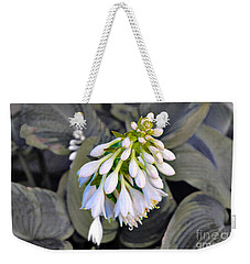 Hosta Ready To Bloom Weekender Tote Bag