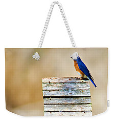 House Hunting Weekender Tote Bag by Lana Trussell