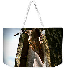 House Wren At Nest Box Weekender Tote Bag