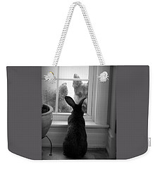 How Much Is The Doggie In The Window? Weekender Tote Bag