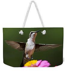 Hummingbird Weekender Tote Bag by Christina Rollo