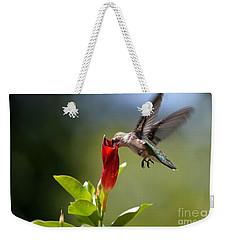 Hummingbird Dipping Weekender Tote Bag by Debbie Green