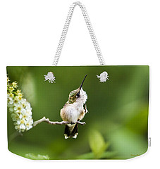 Weekender Tote Bag featuring the photograph Hummingbird Flexibility by Christina Rollo