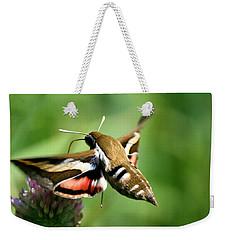 Hummingbird Moth From Behind Weekender Tote Bag