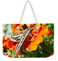 Hummingbird Moth On A Marigold Flower Weekender Tote Bag by Nadja Rider