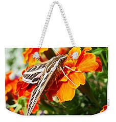 Hummingbird Moth On A Marigold Flower Weekender Tote Bag