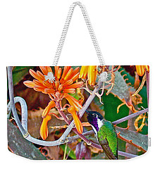 Hummingbird On Aloe In Living Desert In Palm Desert-california Weekender Tote Bag