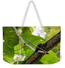 Hummingbird Out On A Limb Weekender Tote Bag