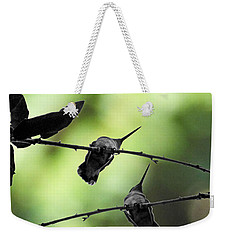 Hummingbird Tree Weekender Tote Bag