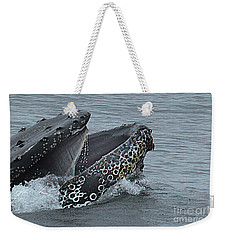 Weekender Tote Bag featuring the photograph Humpback Whale  Lunge Feeding 2013 In Monterey Bay by California Views Mr Pat Hathaway Archives