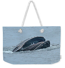 Weekender Tote Bag featuring the photograph Humpback Whale  Lunge Feeding Monterey Bay 2013 by California Views Mr Pat Hathaway Archives