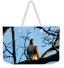 Weekender Tote Bag featuring the photograph Hungry by Ally  White