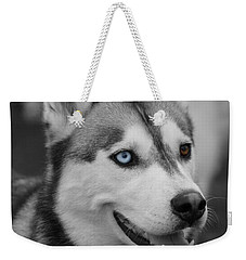 Weekender Tote Bag featuring the photograph Husky Portrait by Vicki Spindler